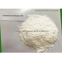 Cheap Oral Anabolic Steroids Testosterone Sustanon 250 Steroids For Muscle Growth for sale