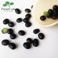 New Crops Organic Food Dried Black Soy Bean Healthy Green Products