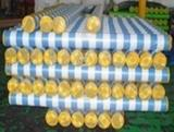 Cheap pe tarp sheet with color stripe for sale
