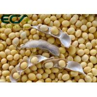 Nutrient Content 70% Soy Lecithin Powder Synthesis And Metabolism Function