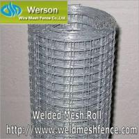 Cheap Welded Mesh,Welded Mesh Roll,Welded Mesh Panel,Welded Wire for sale