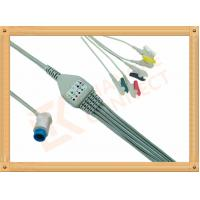 Cheap Mindray PM5000 Patient 5 Lead Ecg Cable 12 Pin Ecg Lead Wires for sale