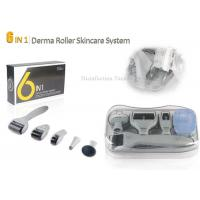 Cheap Grey Stainless Steel Needle Microneedle Skin Dermal Roller System 6 in 1 Roller for sale