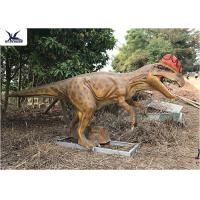 Cheap Realistic Silicone Life Size Model Dinosaurs , Forest Dinosaur Garden Ornaments for sale