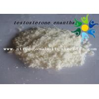 Cheap Raw Test E Powder Testosterone Anabolic Steroid Testosterone Enanthate CAS 315-37-7 for sale