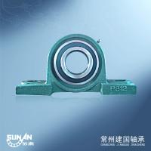 60mm Cast Iron Pillow Block Bearing Flange Housing Shock - Resistant UCP312