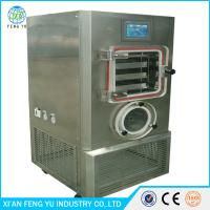 factory price Medium-sized food fruit &vegrtable processing Lyophilizer vacuum freeze dried equipment