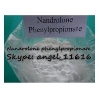 Healthy NPP Injectable Steroids Nandrolone Powder Nandrolone Phenylpropionate