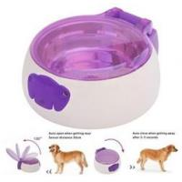 Cheap Sensor pet feeder/ auto open and close pet bowl for cats and dogs/ pet food water for sale