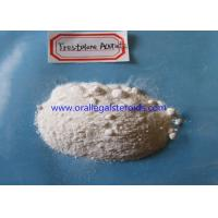 Cheap Trestolone Acetate Powder TRT Steroids Androgen Replacement Therapy 99% Assay for sale