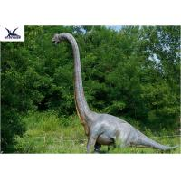 Cheap 18 Meters Giant Realistic Dinosaur Models , Life Size Farm Animal Models  for sale