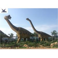 Cheap Amusement Park Equipment Real Life Size Dinosaurs , Dinosaur Lawn Ornament  for sale