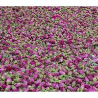 Cheap Gansu excellent products Kushui Rosebud for sale