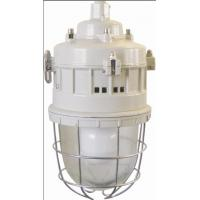 Cheap Series of anti-explosion lamps Flame-proof lamp Series BGD52(Maintenance-free energy-saving EDL electrodeless lamp)ⅡC、DIPA20 for sale