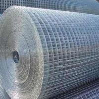 Cheap Stainless Welded Wire Mesh for sale