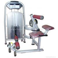Cheap body building,gym equipment,fitness/Lower Back Extension for sale