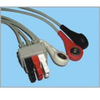 PR1000(GE) Cable With Leads