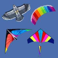 Cheap outdoor toy different types of kites for sale