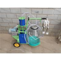 Cheap Piston Typed Single Transparent Milk Bucket Cow Milking Machine for sale