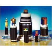 Plastic Insulated and Sheathed Branch Cable with the Rated voltage at 0.6/1kV and Below