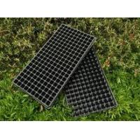 Cheap 200 black plastic nursery seed plant tray for sale