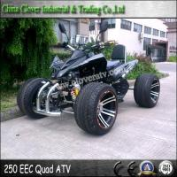 Cheap EEC Standard 14 Inch Street Wheel Legal Racing ATV 250cc Quad Bike for sale