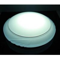 Cheap Remote Control Meizu LED Ceiling Light-LED Spot Light,Spotlight,LED Neon Flex for sale