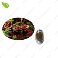 Cheap Ganoderma Extract >herbal extract for sale