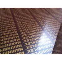 Cheap 4x8 finger joint film faced plywood for sale