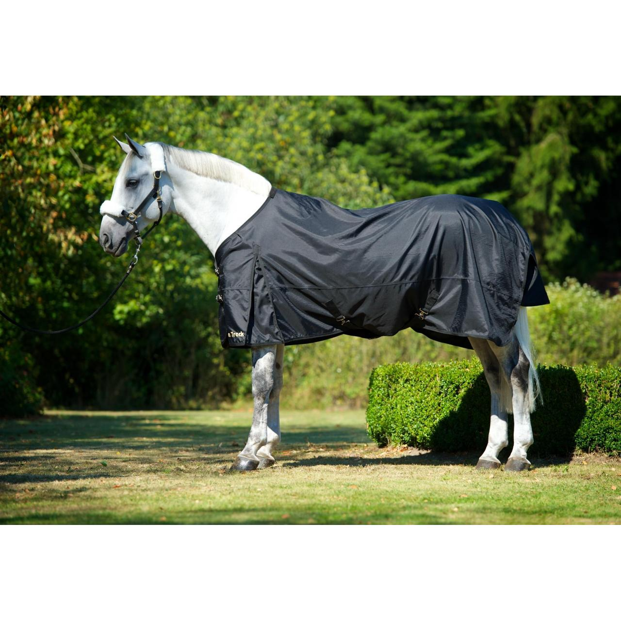 Cheap Therapeutic Turnout Sheet for sale