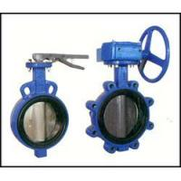 Bi-axial butterfly valve witho