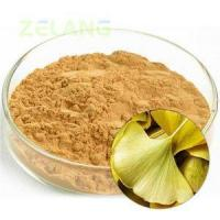 Cheap Ginkgo Biloba Extract 24:6 Normal for sale