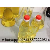 Cheap Test P 100mg/ml for sale