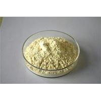 Cheap Natural extractive Panax Notoginseng Extract for sale
