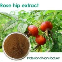 Cheap Factory Rosehip Seed Oil,Rose Hips Seed Oil , Rose Hips Oil for sale