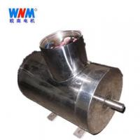 Quality Wannan motor _YES stainless steel series motor for sale