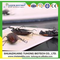 Cheap Pesticide TuHong Cockroach Paper Trap for sale
